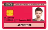 Apprentice CSCS Cards