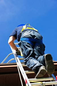 Scaffold Ladders training