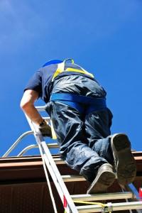 Scaffold Ladders training