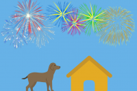 Bonfire Night Looking After Your Pet