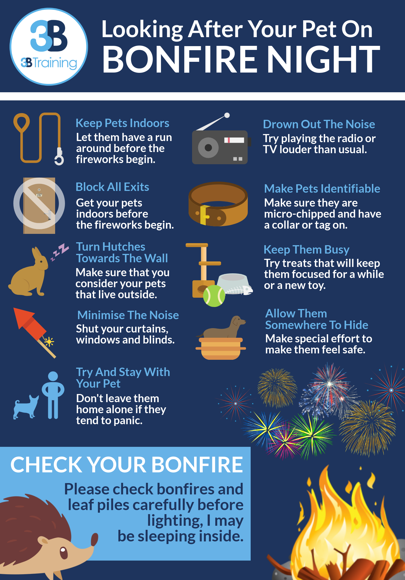 Pet Safety On Bonfire Night