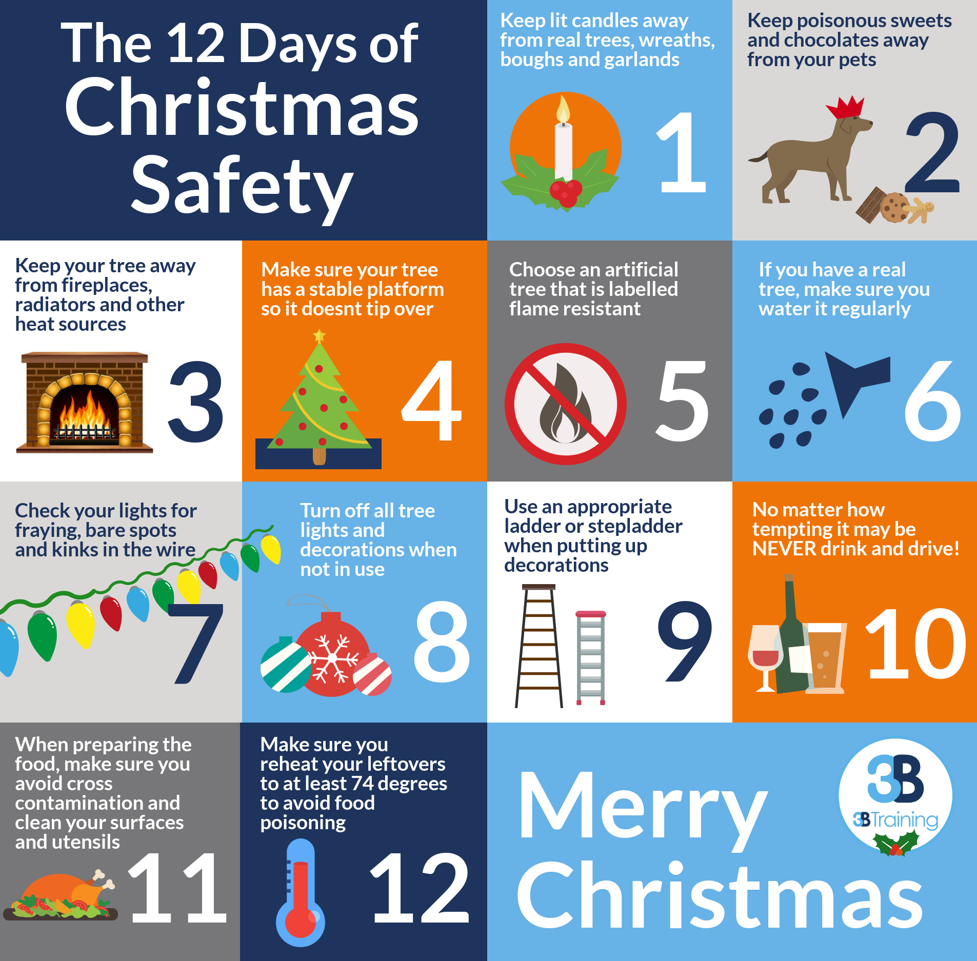 12 Days of Christmas Safety
